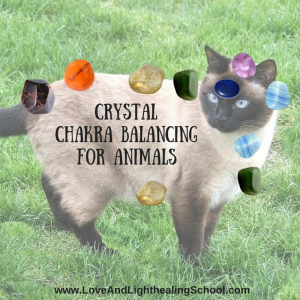 Crystal-Chakra-Healing-for-Animals-300x300